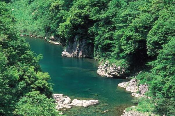 Kuzuryu canyon    *Photo by Ishikawa Prefectural Tourism League